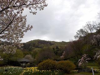 三毳山の景色