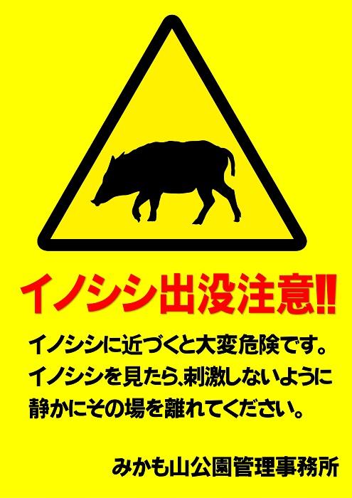 beware of wildboar