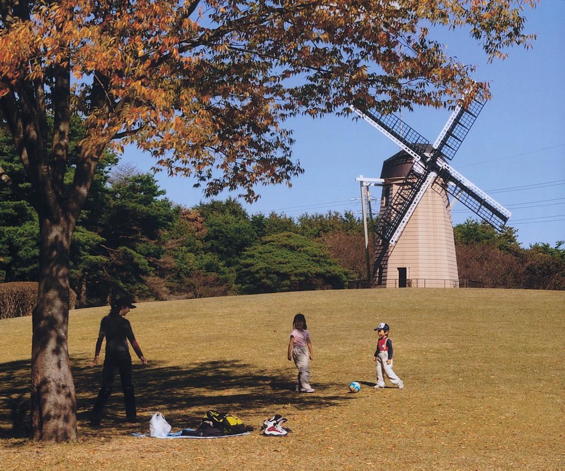 【秋】彩る秋と風車
