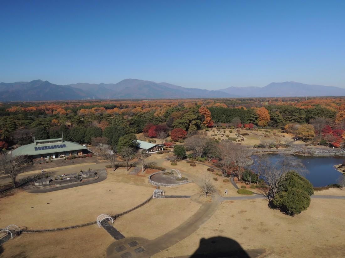 【秋】サンサンタワーからの眺め