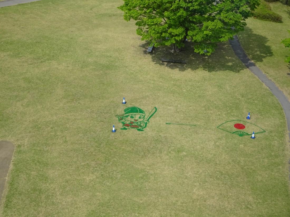 サンサンタワーからの芝生絵イベントの様子