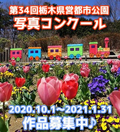 第34回「栃木県営都市公園写真コンクール」作品募集中