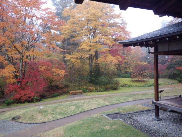 邸内から見た庭園