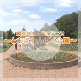県営都市公園に行こう