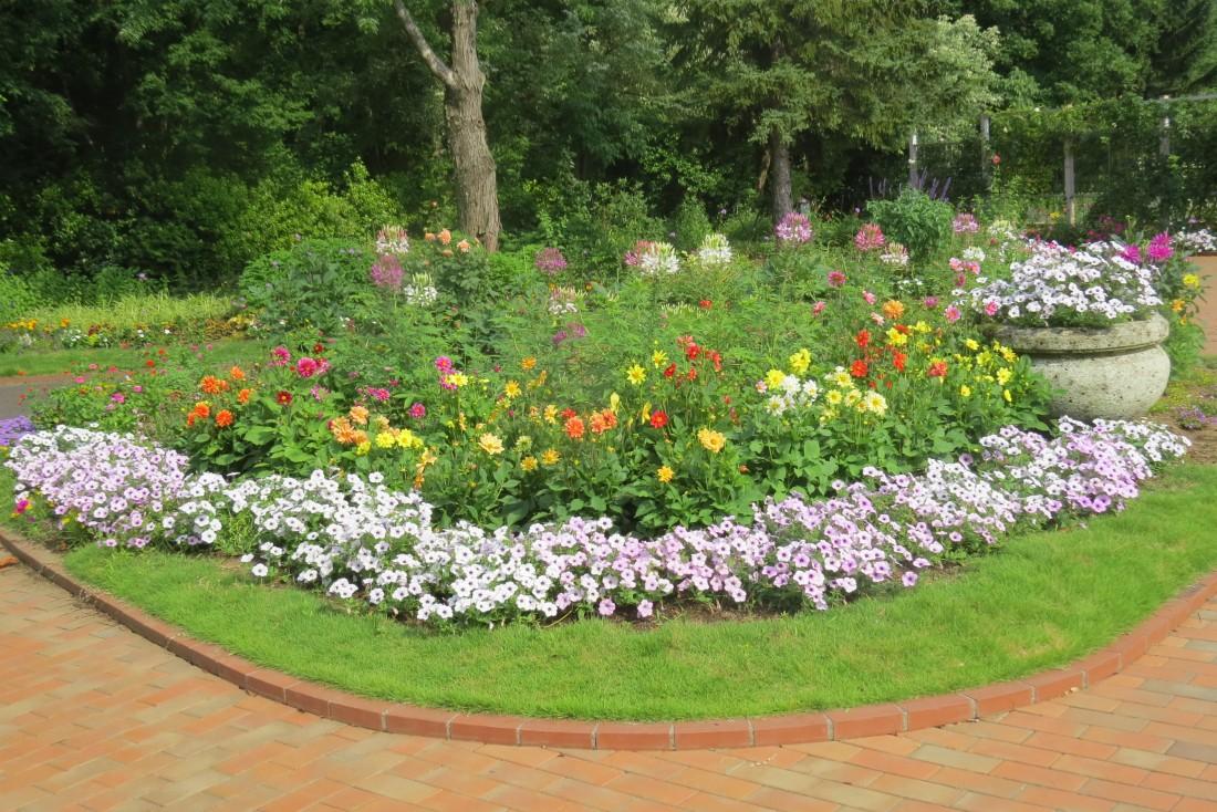 夏の夢花壇