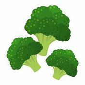 園芸講座『秋野菜の上手な作り方』