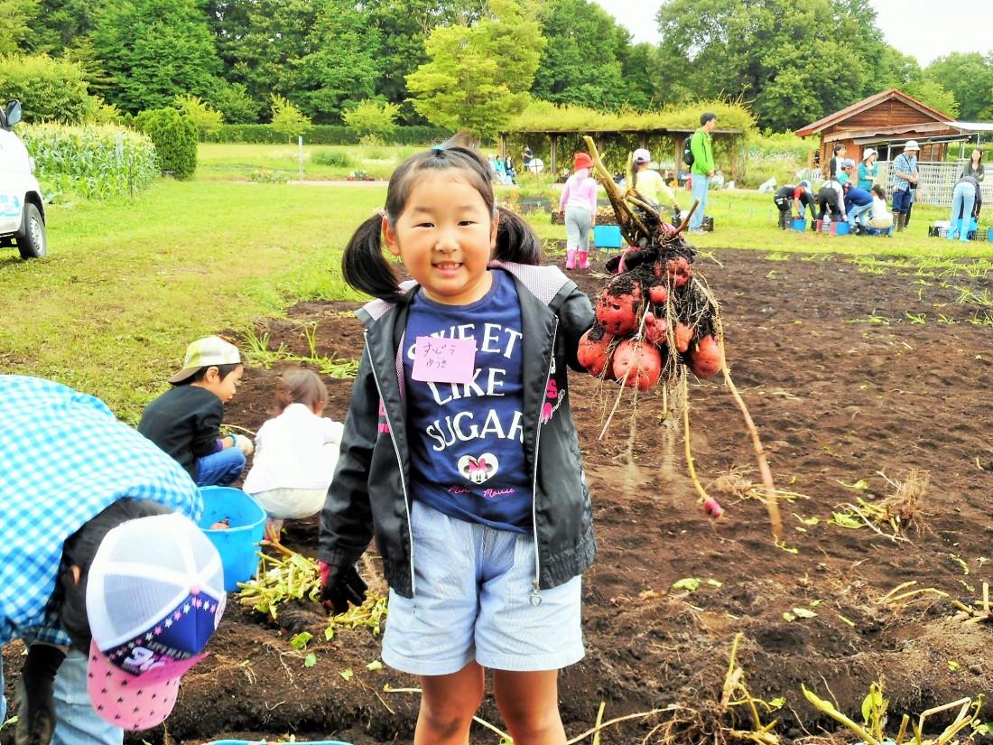 農業体験『ジャガイモの収穫2』