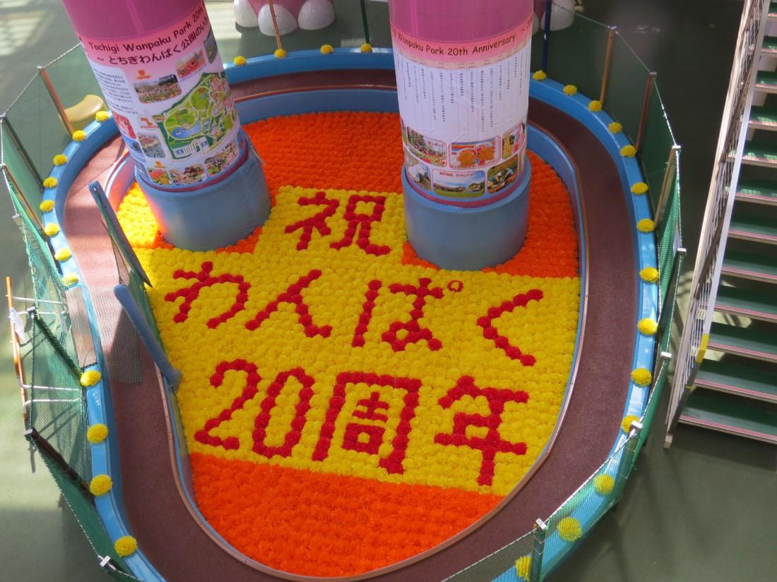 祝わんぱく20周年の花文字