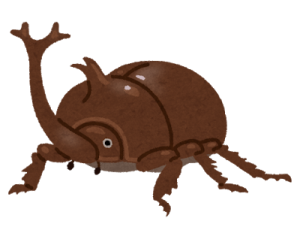 bug_kabutomushi_osu_brown