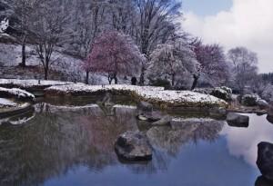 ④佳作049「名残の雪」