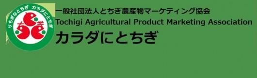 とちぎ農産物マーケティング協会バナー