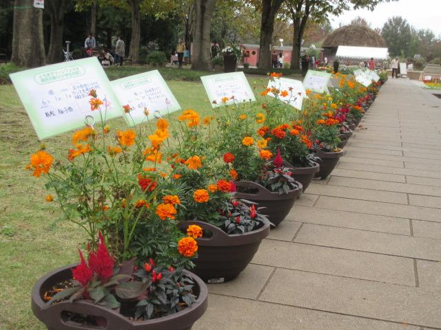 とちぎわんぱく公園「県民花飾り〈小学生の部〉」