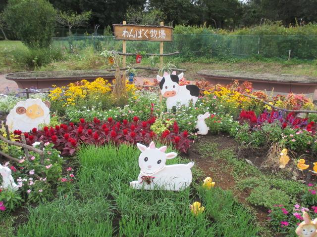 とちぎわんぱく公園「園芸福祉とちぎの創作花壇」