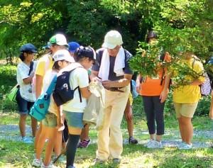 とちぎわんぱく公園「木と自然の体験教室 自然観察会&木工工作体験」